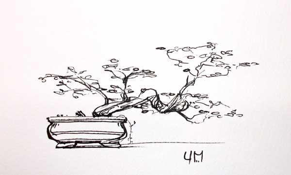 Dessiner un bonsa au pinceau bambou et l encre en b ton - Dessin bonzai ...