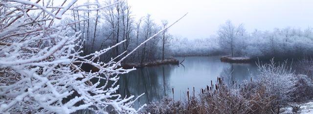 Parc d'Isle gelé