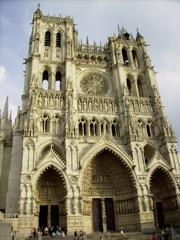 Rose de Notre Dame d'Amiens