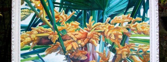 Inflorescence Trachycarpus fortunei