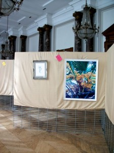 Installation au Salon des Arts