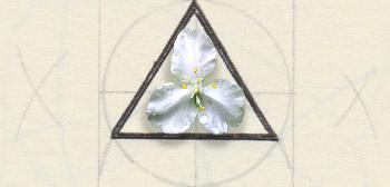 Dessin d'un triangle